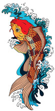 Koi Carp Gold Fish Swimming Up...