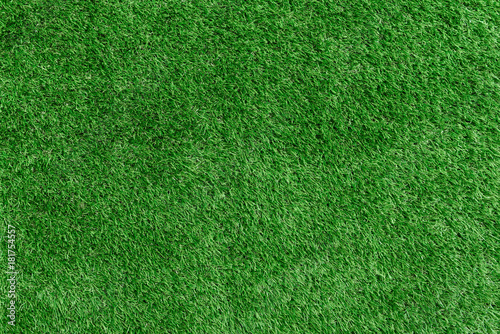Artificial grass background Canvas Print