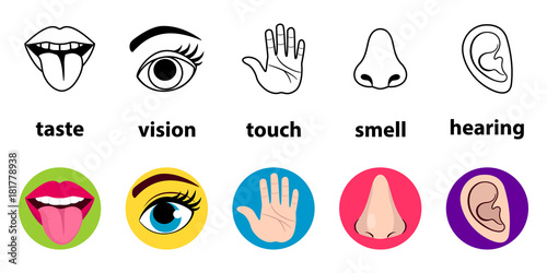Foto  Set of five human senses: vision (eye), smell (nose), hearing (ear), touch (hand), taste (mouth with tongue)