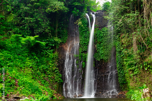 In de dag Watervallen Beautiful waterfall in green forest. Nature landscape background