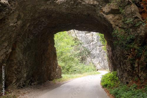 the old mountain road passes through a stone tunnel Tara mountain Serbia