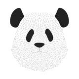 Panda's face. Animal portrait - 181802139