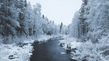 Snow And Dark River