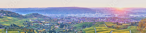 Photo sur Toile Lilas Vineyards in Stuttgart / colorful wine growing region in the south of Germany with view over Neckar Valley