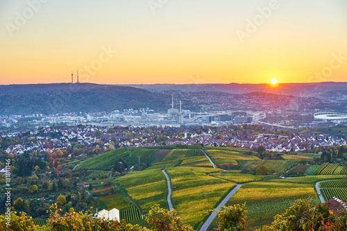 Vineyards in Stuttgart / colorful wine growing region in the south of Germany wi Canvas Print