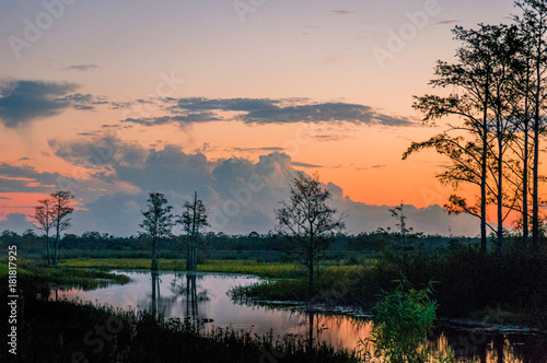 Photo winding river in the swamp with orange and purple sunset and cypress tree silhou