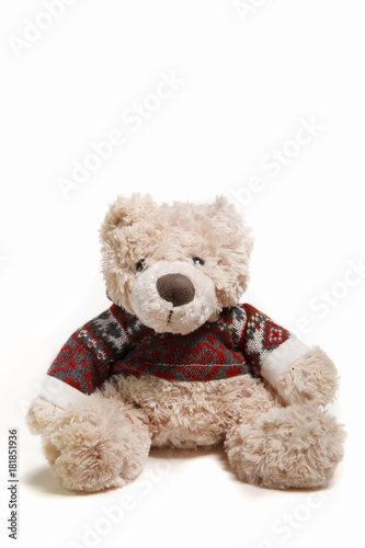 Teddy bear isolated on white background Wallpaper Mural