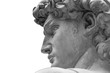 canvas print picture - Head of a famous statue by Michelangelo - David from Florence, isolated on white