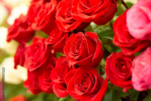 Staande foto Roses A portrait of flowers roses in a bouquet