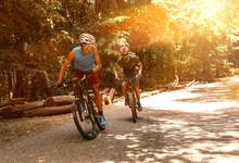 Two Mountain Bikers Riding Bik...