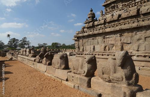 Fotografia, Obraz  Templo de la Orilla, Mahabalipuram, India