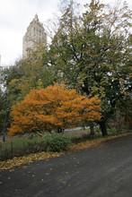 Beautiful Fall Scenery In Cent...