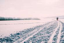 Snow. Skiing Track.