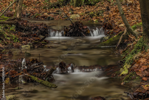 Bansky creek in autumn morning near Spania Dolina Wallpaper Mural