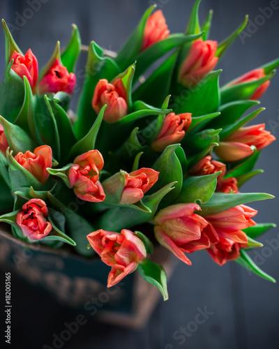 Plakat Bukiet czerwoni tulipany w papierowej torbie na drewnianym ciemnym tle. Wiosna! Świeżość! Piękny bukiet kwiatów. Miejsce na tekst. Karta. Oryginalne tło lub karta. Vintage rustykalny styl rustykalny