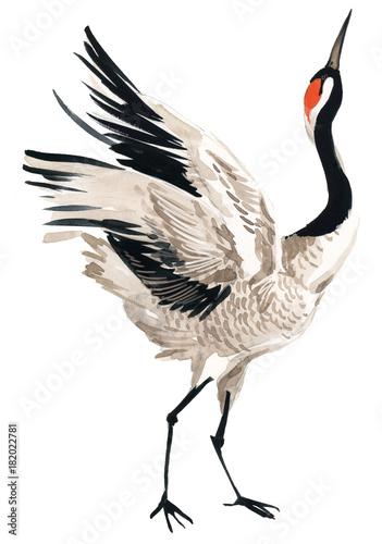 Naklejki żurawie  japanese-crane-bird-watercolor-illustration