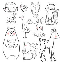 Baby Animal Vector Set
