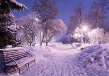Beautiful Winter Night Landsca...