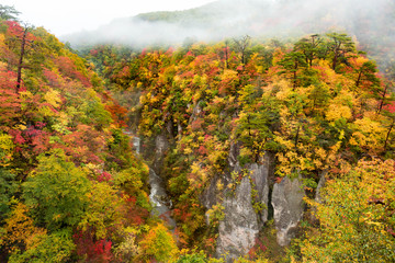 Mountain and river flow with fog in the morning in autumn season around Naruko area in Tohoku region, Japan