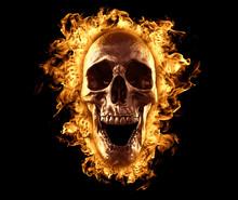 Skull Burned In Fire Wallpaper 3d Rendering