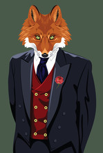 Portrait Of Fox In The Men's B...