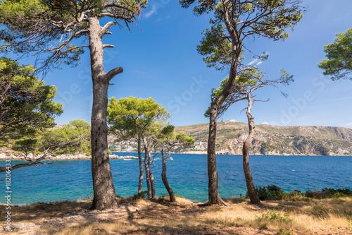 Foto op Aluminium Oceanië Beautiful Island of Lokrum, City of Dubrovnik, Adriatic Sea, Croatia, Europe