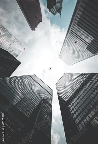 Fotomural Toronto Skyscrapers