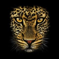 Fototapeta Pantera hand-drawing portrait of a leopard