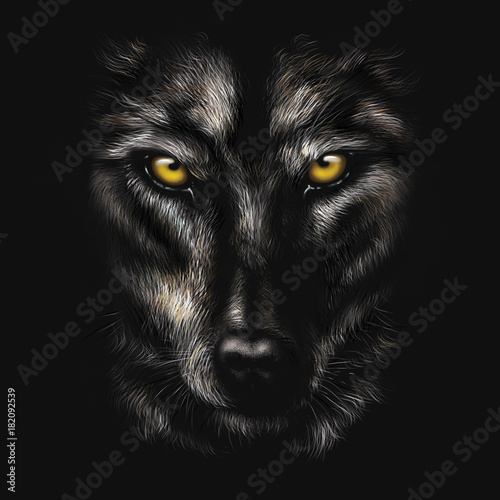 Photo hand-drawing portrait of a black wolf