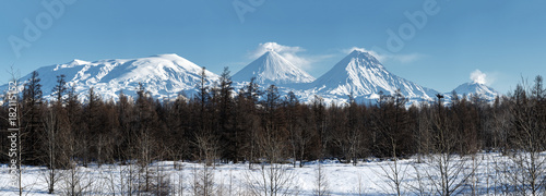 Spoed Foto op Canvas Grijze traf. Panoramic wintry volcano landscape of Kamchatka Peninsula: view of eruption active Klyuchevskoy Volcano and scenery other snowy rocky volcanoes of Klyuchevskaya Group of Volcanoes. Russian Far East.