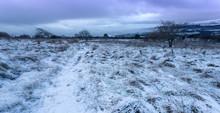 Snow English Countryside