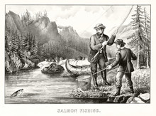 A Man And A Boy Fishing A Salm...