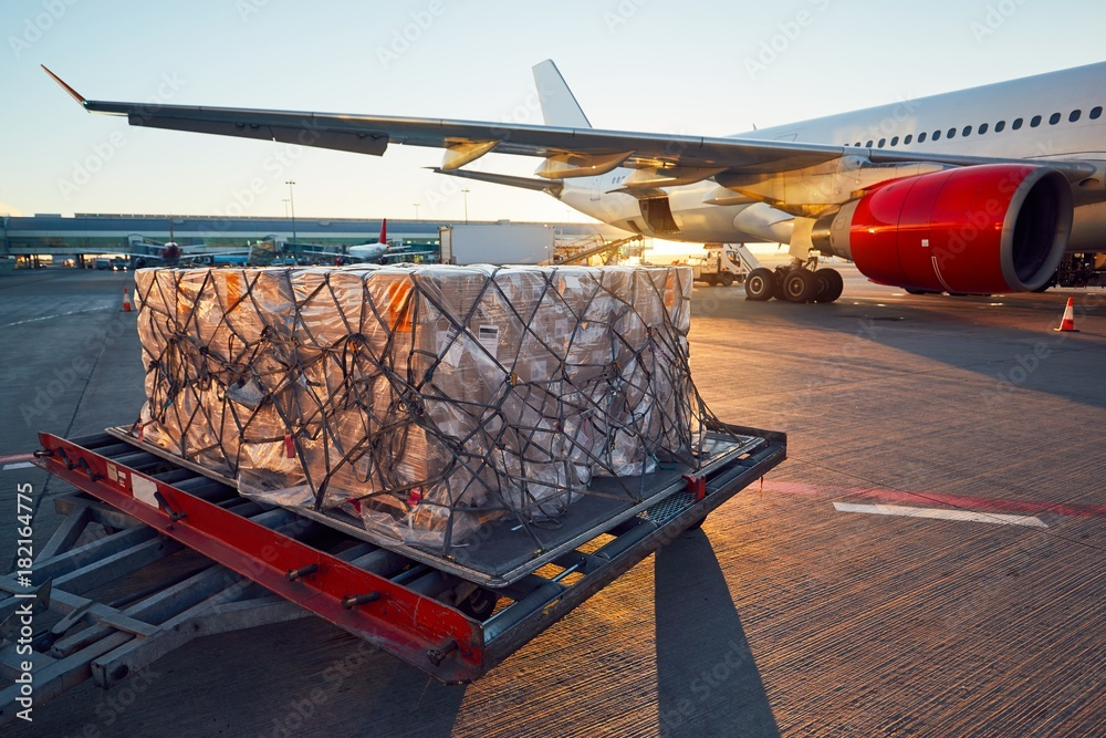 Fototapety, obrazy: Loading to the aircraft