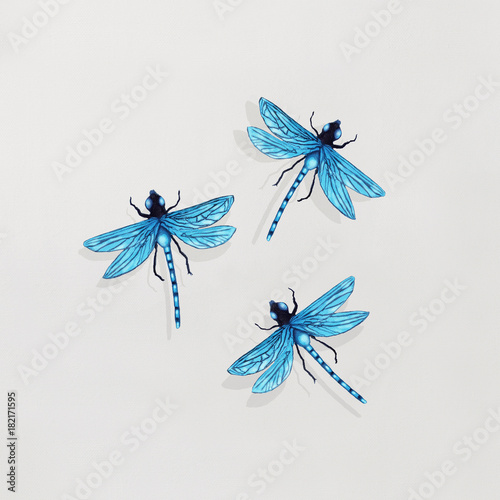 Montage in der Fensternische Surrealismus Three Dragonflies