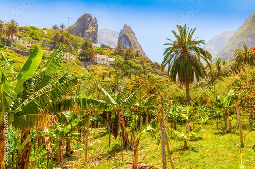 Tuinposter Canarische Eilanden Gomera island interior panorama