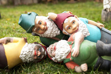 Dwarfs On The Grass