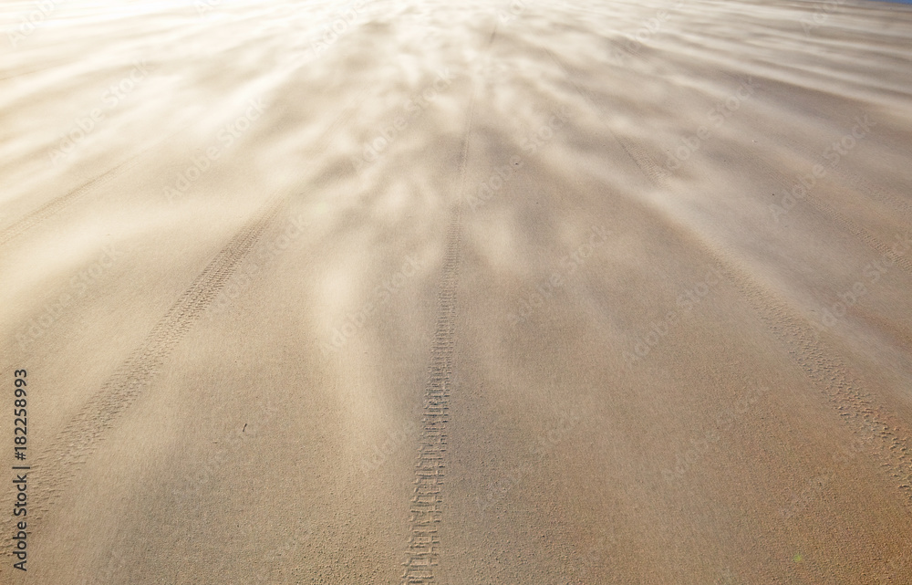 Fototapety, obrazy: Storm blowing sand over the beach