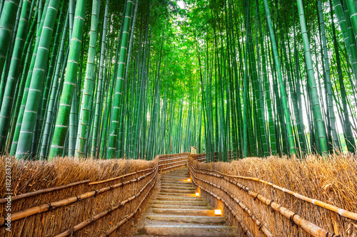Poster Bamboe Bamboo Forest in Kyoto, Japan.
