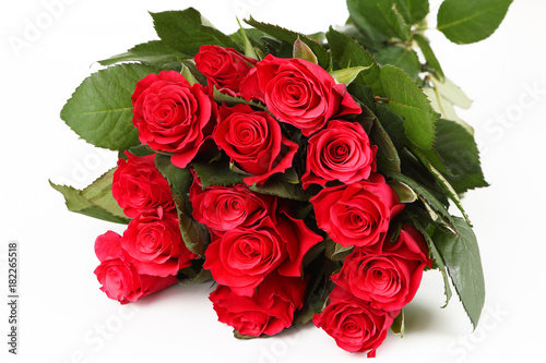 Foto op Plexiglas Struisvogel rote Rosen