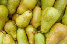 A Pile Of Conference Pears As ...