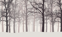 Vector Illustration Of A Winter Forest Without Leaves With Hazy Backgrounds