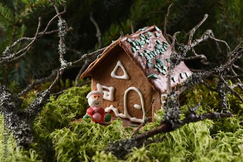 Homemade Christmas Gingerbread House And Smiling Marzipan Santa