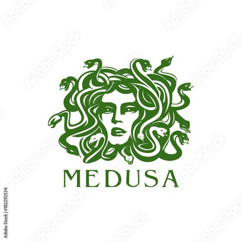 head medusa Canvas Print