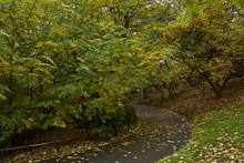 Chemin Tournant Sous Les Couleurs De L'automne Au Parc Josaphat à Schaerbeek