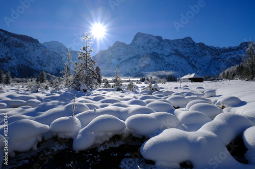 Photo Winter am Almsee