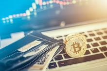 Bitcoin Gold Coin. Cryptocurre...
