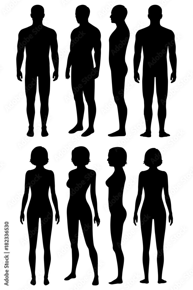 Human Body Anatomy Front Back Side View Vector Woman And Man