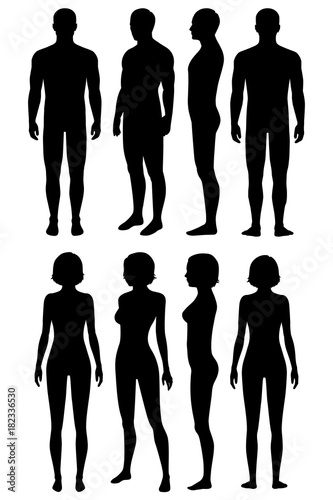 human body anatomy, front, back, side view, vector woman and man ...