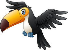 Cartoon Funny Toucan Flying