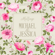 Bridal Shower Invitation With ...